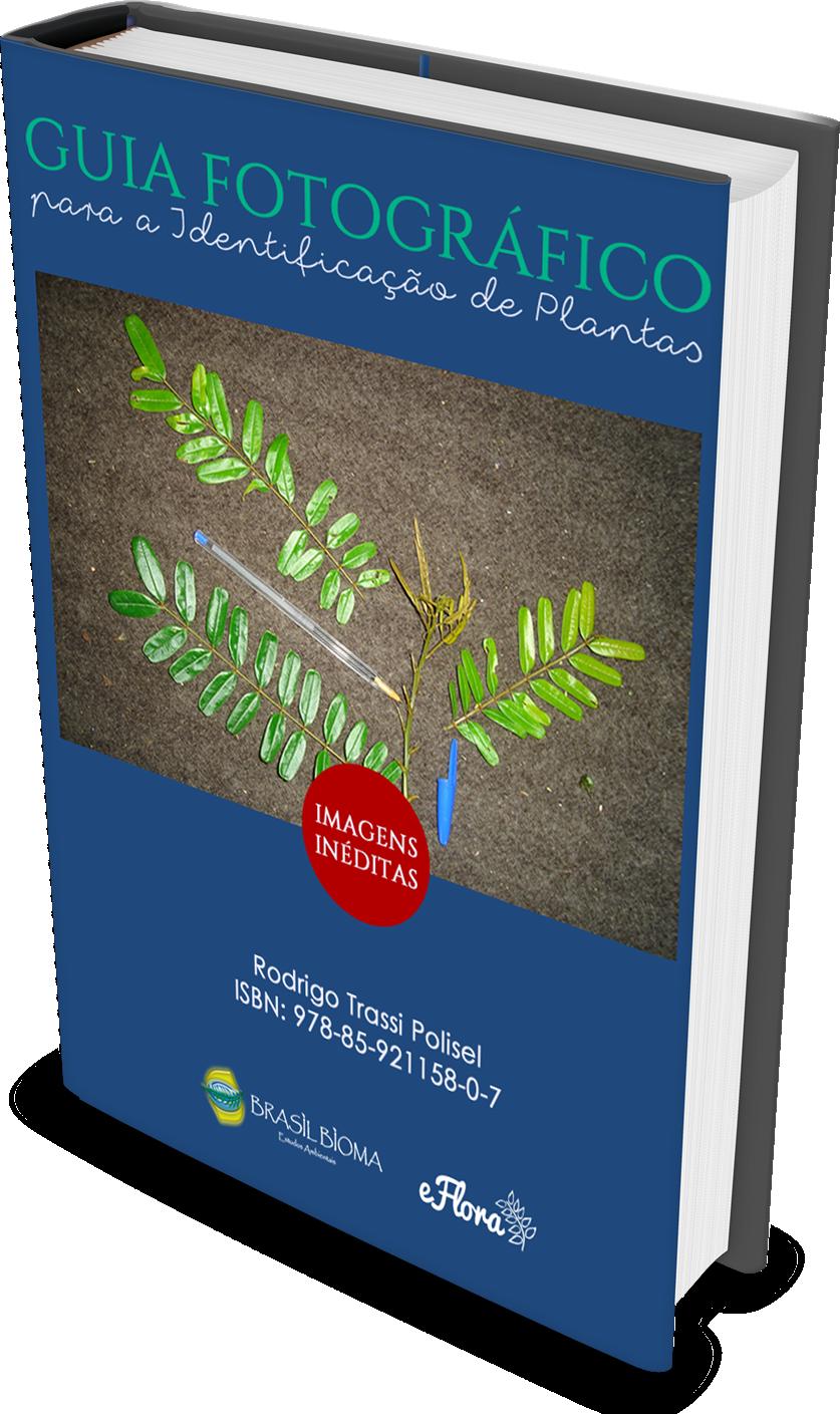 Guia fotográfico de identificação de plantas