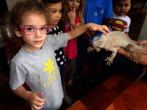 Thomaz-isabel e iguana