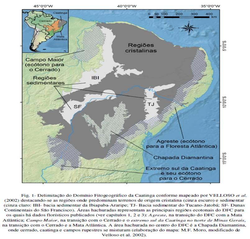 Figura 21 - Retirado de: Tese de Doutorado, Prof. Dr. Marcelo Moro, UNICAMP 2013.