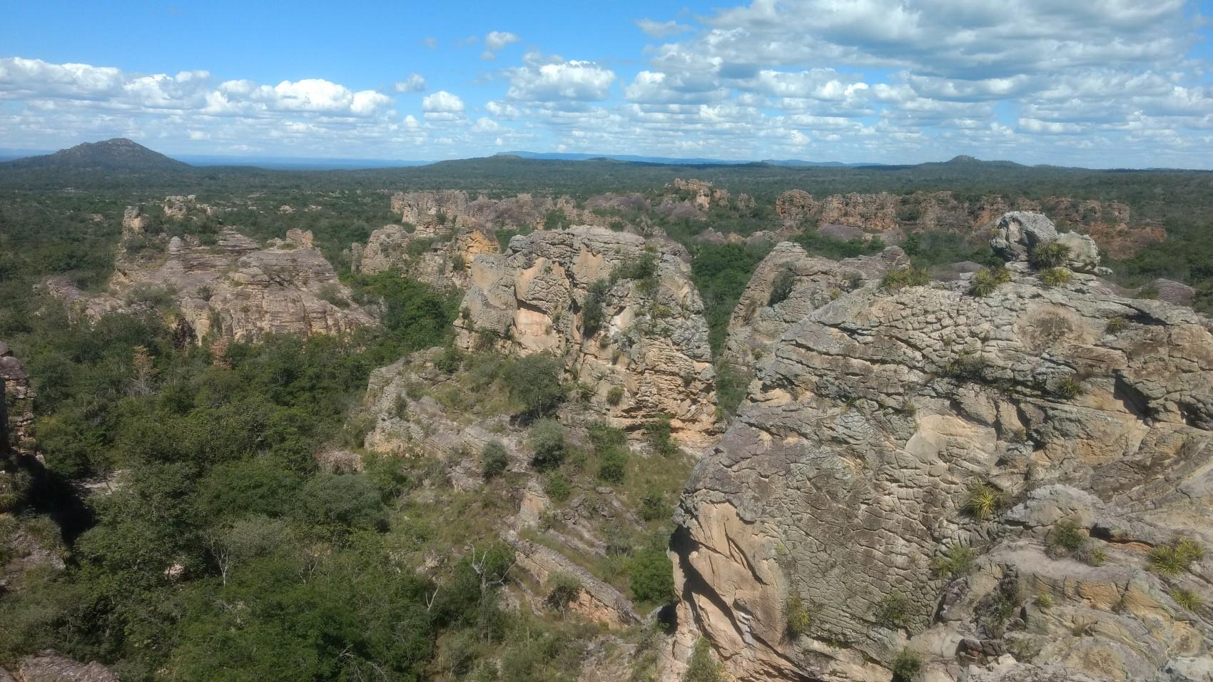Figura 12 – Vista do Cerrado senso-stricto (Savana Arbozizada, segundo IBGE) no mirante do Parque Nacional de Sete Cidades, em Piripiri (PI). Fonte: Arquivo pessoal.