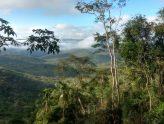 """Região de transição ecológica no centro sul da Bahia, com a Floresta Estacional (chamada na região de """"Mata de Cipó"""") nas áreas de maior altitude e a Savana Estépica Arborizada (Caatinga arbustiva) nas áreas suavemente onduladas de altitudes mais baixas"""
