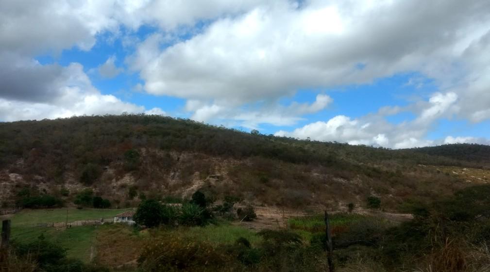 Vegetação de transição da Mata Atlântica com a Caatinga em Padre Paraíso, Norte de Minas Gerais.