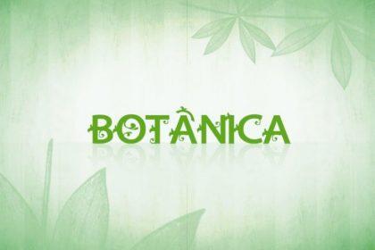 Dia Nacional de Botânica