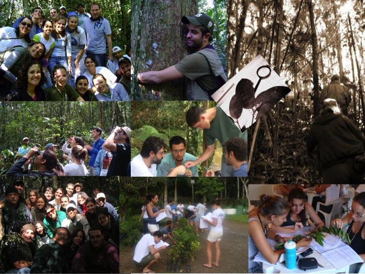 Cursos presenciais da Brasil Bioma