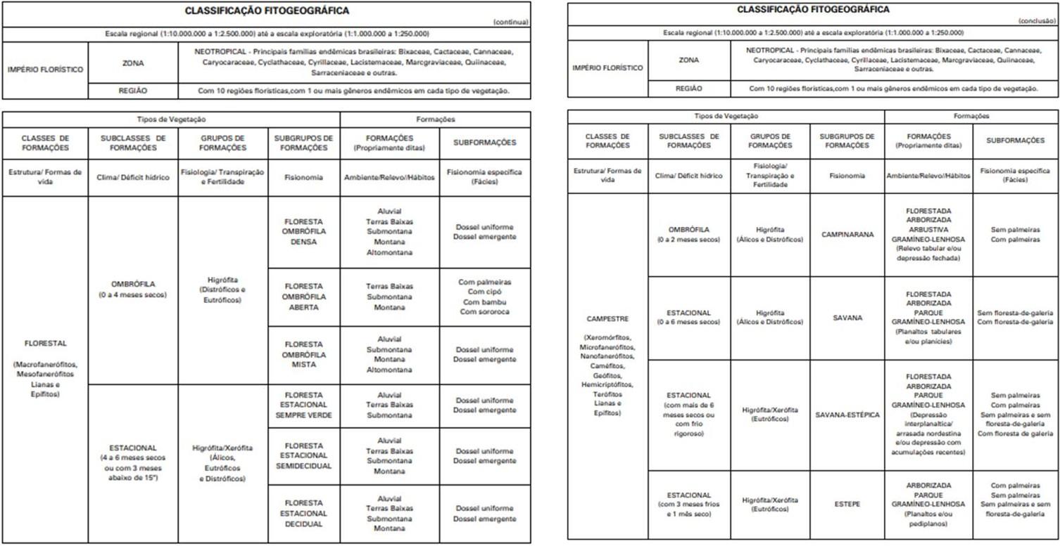 Classificação da vegetação