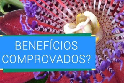 Passiflora: aprenda a fazer um chá de maracujá e saiba os benefícios