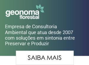 Geonoma Florestal - Consultoria Ambiental