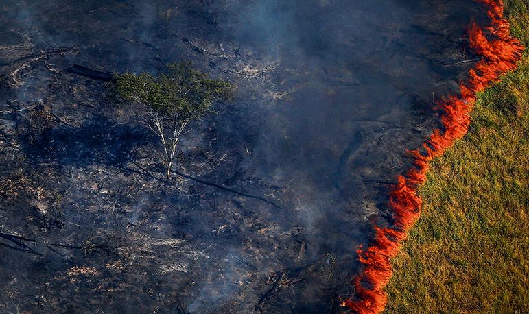 Trecho da Amazônia em chamas no Sul do Pará