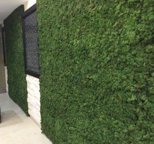 como fazer um jardim vertical parede verde