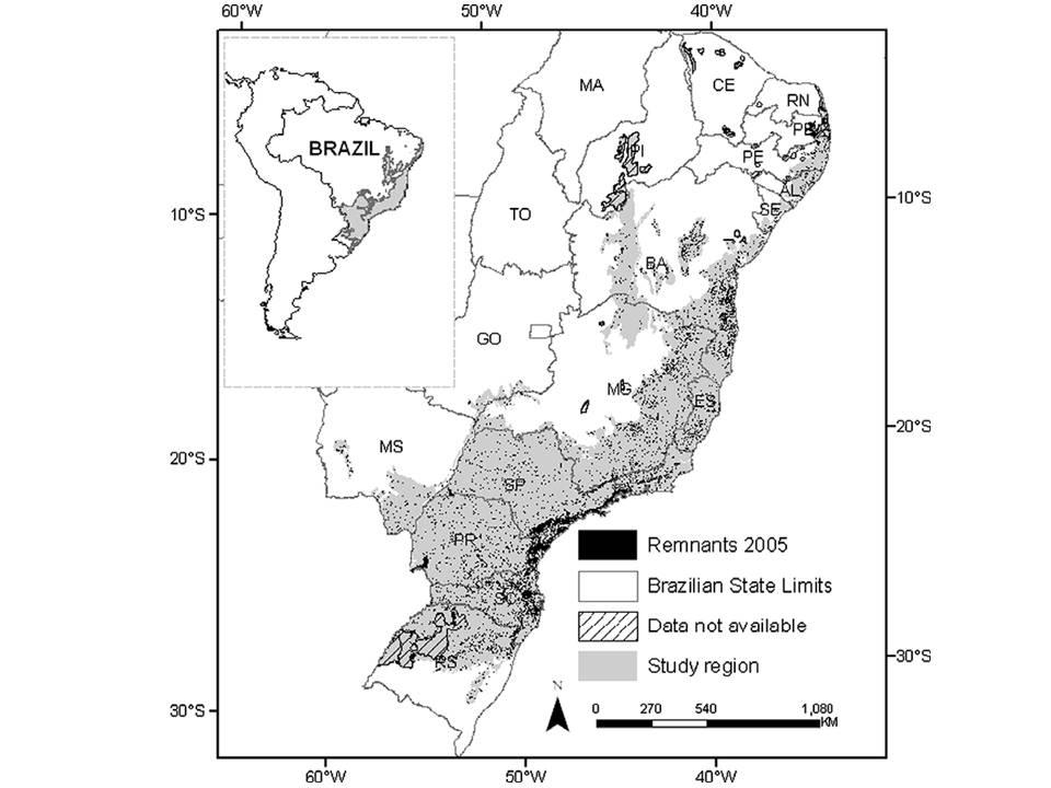 quanto resta da floresta atlântica