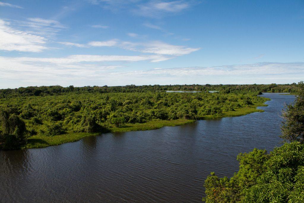 Rio Cuiabá e vegetação antes de incêndios no Pantanal